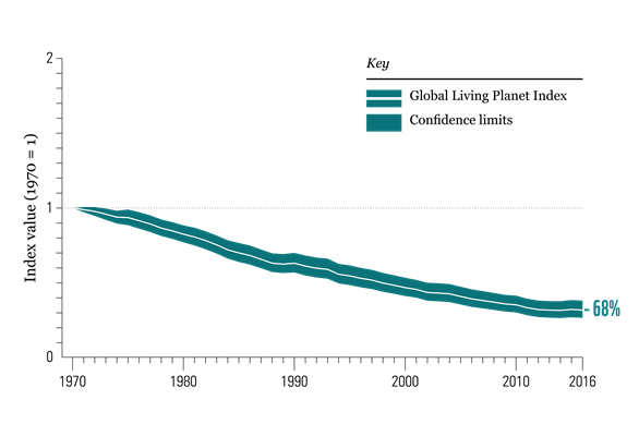 Living Planet Report 2020 global trend