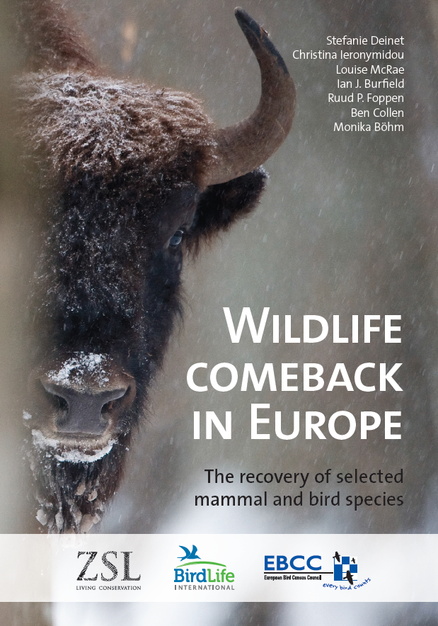 Wildlife Comeback Report